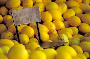 Silla y melones-Editar-Editar