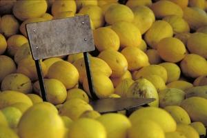 Silla y melones